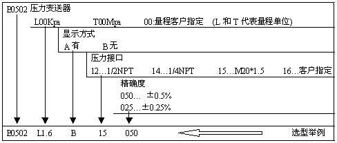 B0502帶顯示壓力變送器