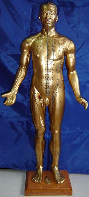 銅人針灸模型|銅人模型|中醫針灸銅人模型