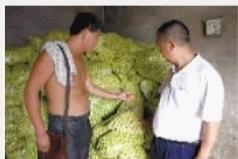 8月21日,湘潭一大枣催熟窝点被查。
