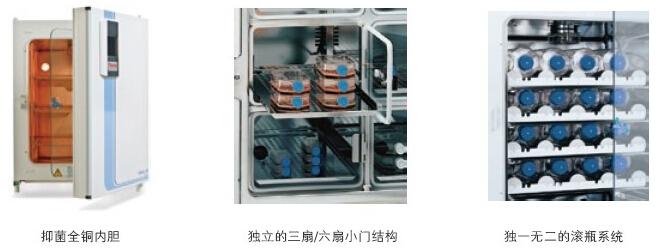 thermo二氧化碳培養箱