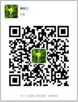 日本柴田科学080150-054活性碳管