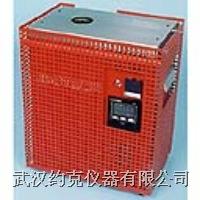 鈉鹽熱管爐 426