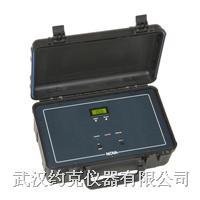 便攜式氫氣純度分析儀 YK335