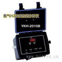 加拿大 氫氣濃度檢測分析儀 便攜式熱導式 YKH-2010B YKH-2010B