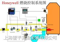 工业炉燃烧系统定制 工业热风炉,锅炉,窑炉,烘干炉等