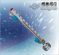 張大千紀念館石油液化氣磁翻柱液位計/021-63800050 ZSQ941H-16P/C