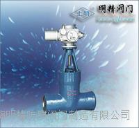 高溫高壓電站閘閥 Z960Y-320
