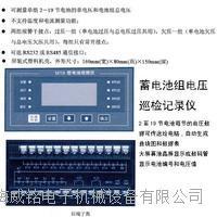 电动车蓄电池分选配组仪 WM-