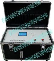 泵吸式多氣體分析儀