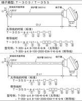 T-30S/T-35S接線盒型鎧裝熱電偶溫度探頭