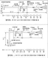 R-101/R-111熱電阻PT100鉑電阻RTD溫度探頭