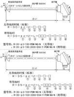 R-30/R-35接線盒熱電阻PT100鉑電阻RTD溫度探頭