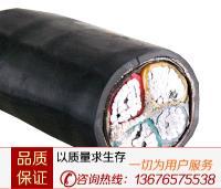 交聯聚乙烯絕緣控制電纜