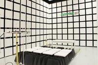 射頻輻射抗擾度(RS) 射頻輻射抗擾度(RS)
