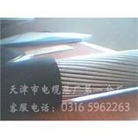 *新通信電纜1000X2X0.4 *新通信電纜1000X2X0.4