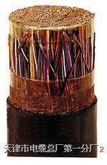 大對數鎧裝電纜 HYA23 400*2*0.5 HYA23 400*2*0.5