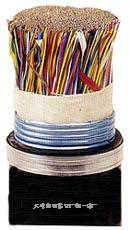 大對數軟電纜  HYV