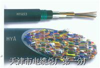 HYA 100×2×0.50mm  HYA
