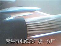 鋼絲鎧裝通信電纜 WDZ HYA53 30*2*0.4 WDZ HYA53 30*2*0.4
