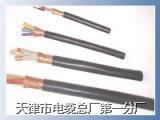 鎧裝屏蔽軟電纜ZR-KVVRP22 ZR-KVVRP22