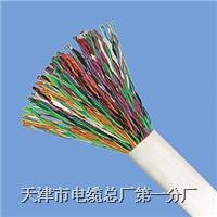 通信電纜規格型號大全 HYA HYAC HYAT HPVV HJVV
