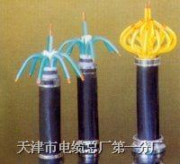 KYJVR 電纜 KYJVR多種規格和型號的產品我*全 歡迎臨咨詢和洽談 KYJVR
