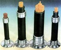 KYVP22 電纜KYVP22多種規格和型號的產品我*全 歡迎臨咨詢和洽談 KYVP22