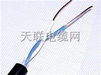 KVVP-8×1.0耐油、耐熱、屏蔽阻燃電纜 KVVP-8×1.0耐油、耐熱、屏蔽阻燃電纜