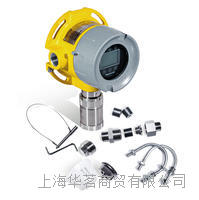 硫化氢在线监测仪 RAEGUARD 3