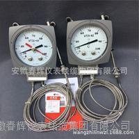 WTZK-03溫度控製器 WTZK-03溫度控製器