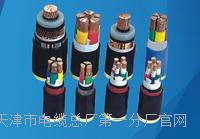 NH-KFFP电缆实物大图 NH-KFFP电缆实物大图