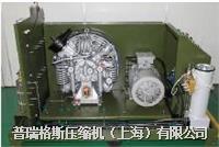 高壓空壓機 LSCE350-300