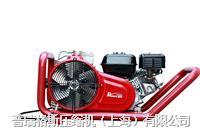呼吸空气充填泵(原装进口) MINI100E/PGB220