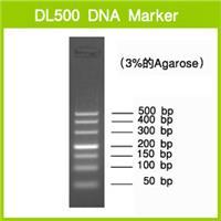 DL500 DNA Marker |3590A |TAKARA進口原裝|現貨當日發 3590A