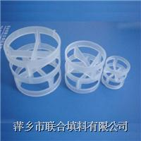 PVDF鮑爾環Pall Ring Ф16、25、38、50、76mm
