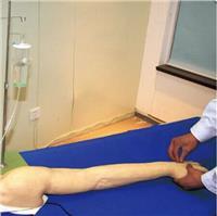 *新完整靜脈穿刺手臂模型  GD/HS39