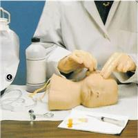 上等嬰兒頭皮靜脈穿刺訓練模型  GD/HS6E