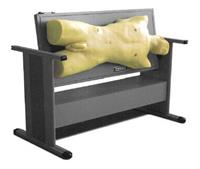 腹部移動性濁音叩診與腹腔穿刺訓練模型 KAH/CK813