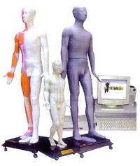 上海光電感應多媒體人體針灸穴位發光模型 MAW-170E