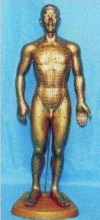 針灸模型|全皮膚銅色人體針灸模型 68CM