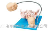 上等分娩機製示教模型 KAH/F23