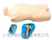 中心靜脈注射穿刺軀干訓練模型KAH-ZXA KAH-ZXA