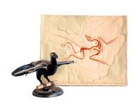 始祖鳥化石及複原模型 KAH3217