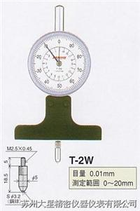 PEACOCK深度表 T-2W