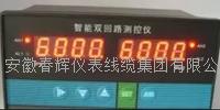 智能雙回路測控儀CHXDM8203