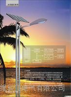 太阳能路灯 TYN-001