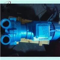 2BV2071水環式真空泵