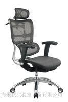 智能化多功能椅 CSR113DQ-01