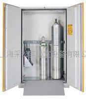 氣瓶存儲安全櫃,30 分鍾防火 B60 G30,B120 G30,DIAM125BP,RSOL,ESTINTORE