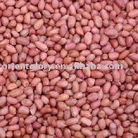 Red Skin Peanuts Kernels